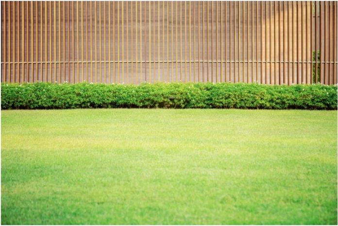 Benefits of professional lawn care services
